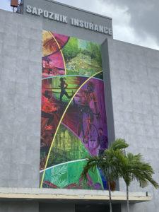 Murals Interior Design Miami